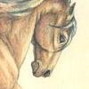 Earth-mare