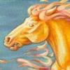 Fire-Stallion